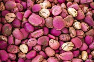 Some Uncommon Fruits and their Health Benefits – GTBank Food